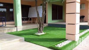 30mm Thickness Artificial Grass Carpet ( Grass Carpet)