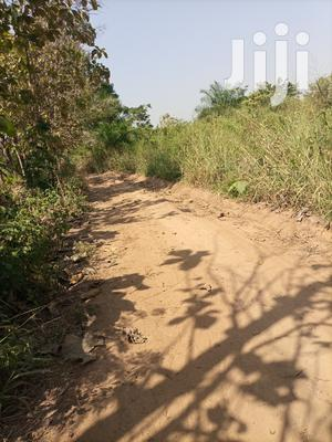 Land for Sale at Berlin Top New Site | Land & Plots For Sale for sale in Brong Ahafo, Sunyani Municipal