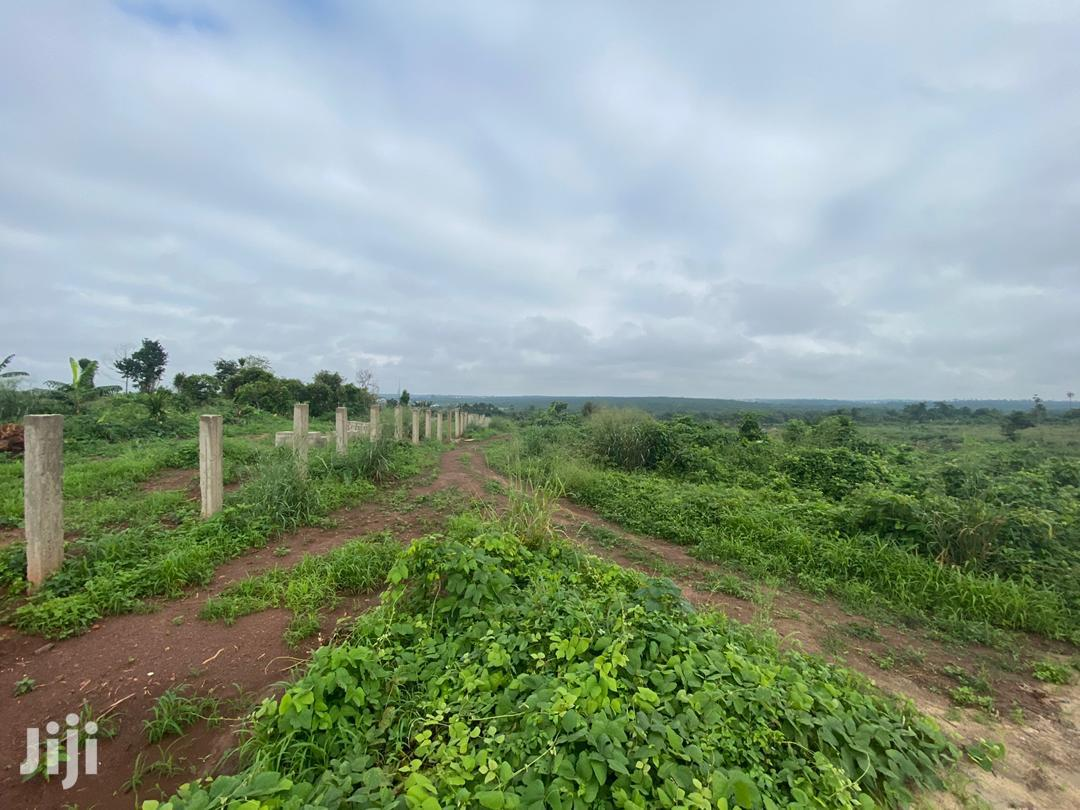 800 Acres of Virgin Land for Sale