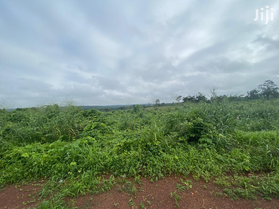800 Acres of Virgin Land for Sale | Land & Plots For Sale for sale in Ejisu-Juaben Municipal, Ashanti, Ghana