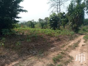 Eastern Region 2acres Farm Land for Sale at Oterkpelu District   Land & Plots For Sale for sale in Eastern Region, Upper Manya Krobo