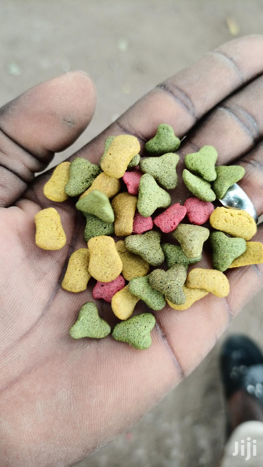 Rich Parrot Food (5kg)   Pet's Accessories for sale in Tema Metropolitan, Greater Accra, Ghana