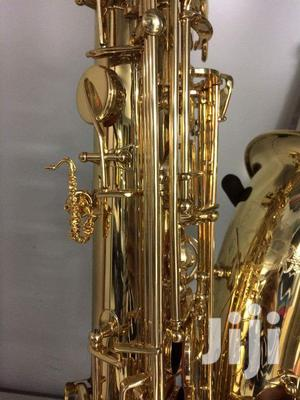 Professional Gold Alto Saxophone