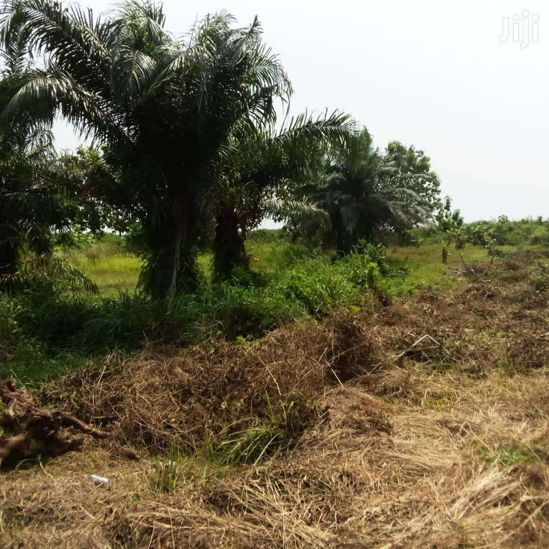 2 Plots of Land for Sale at Airport Ridge