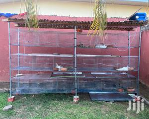 Rabbit Grasscuttercage For Sale | Pet's Accessories for sale in Greater Accra, Achimota