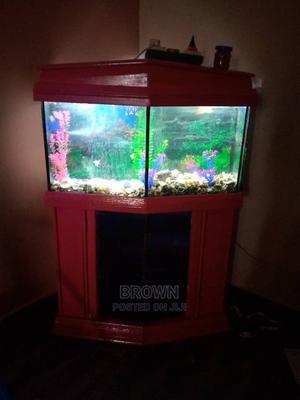 Stylish Pink Aquarium | Fish for sale in Ashanti, Kumasi Metropolitan