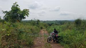 DAAKYE, AKROPONG, E/R - Virgin 680+ Acres Farmland   Land & Plots For Sale for sale in Eastern Region, Akuapim North