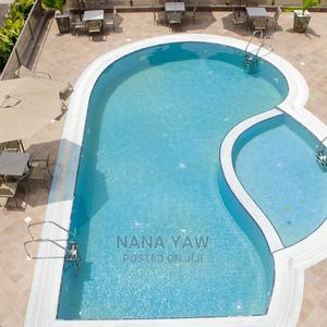 2/3 Bedroom and Pent House Studio | Houses & Apartments For Rent for sale in Greater Accra, Cantonments