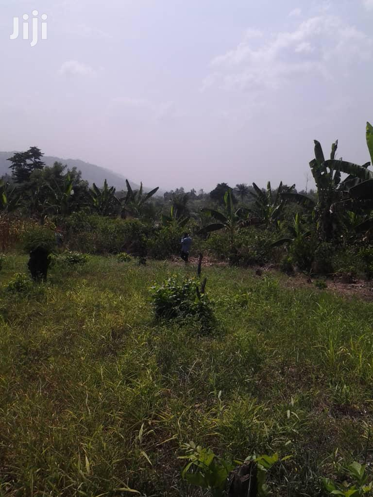 Archive: Farmland for Sale
