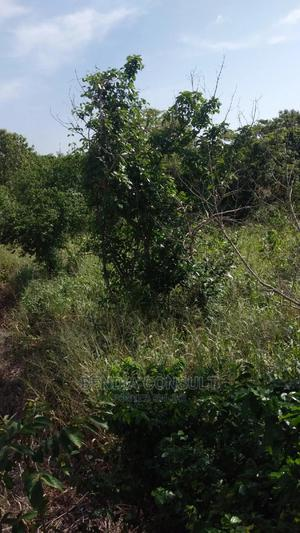 Acres of Farmland at Moto)Ase Oduamsi | Land & Plots For Sale for sale in Brong Ahafo, Sunyani Municipal