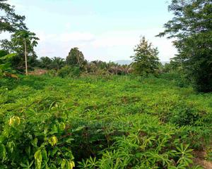 Farm Land for Sale   Land & Plots For Sale for sale in Eastern Region, Akuapim North