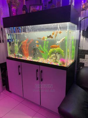 4x2 Feet Aquiarium | Fish for sale in Ashanti, Kumasi Metropolitan