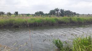 ATIKPUI, HO, V/R - 45,000+ Irrigable Mixed Farmland   Land & Plots for Rent for sale in Volta Region, Ho Municipal