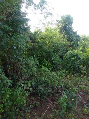 Plot / Farmland for Sale   Land & Plots For Sale for sale in Eastern Region, Akuapim South