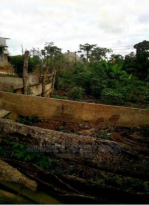 2 Plots Plus No Man's Land for Sale   Land & Plots For Sale for sale in Brong Ahafo, Dormaa East