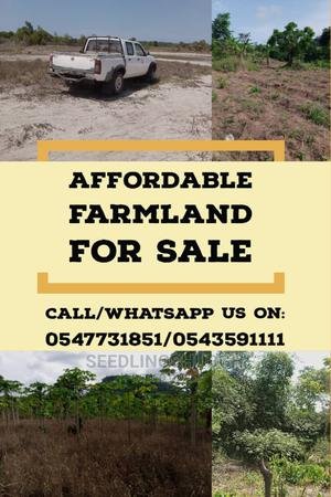 Affordable Farmland   Land & Plots For Sale for sale in Eastern Region, Akuapim South
