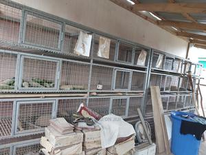 Grass Cutter Cage   Farm Machinery & Equipment for sale in Greater Accra, Achimota