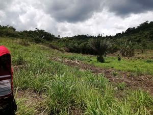 Litigation Free Farmland for Sale   Land & Plots For Sale for sale in Eastern Region, Akuapim South