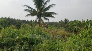 ASAMANKESE, AKIM DIST - 400 Acres Mixed Agricultural Land   Land & Plots For Sale for sale in Eastern Region, West Akim Municipal