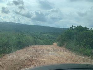 10 Acres of Farm Land at Tinkon Konko Around Koforidua   Land & Plots For Sale for sale in Eastern Region, New-Juaben Municipal