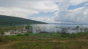 APAASO, AKWAMU DIST, E/R - Rent 1591 Acre Irrigable Farmland   Land & Plots For Sale for sale in Eastern Region, Asuogyaman