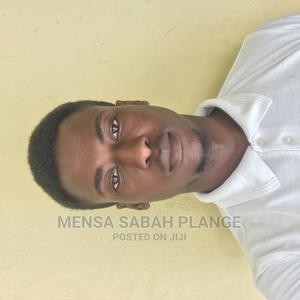 Driver CV | Driver CVs for sale in Central Region, Awutu Senya East Municipal