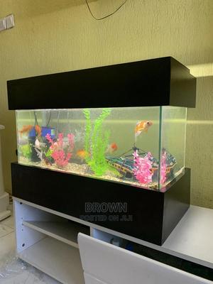 2x1 Feet Aquiarium | Fish for sale in Ashanti, Kumasi Metropolitan