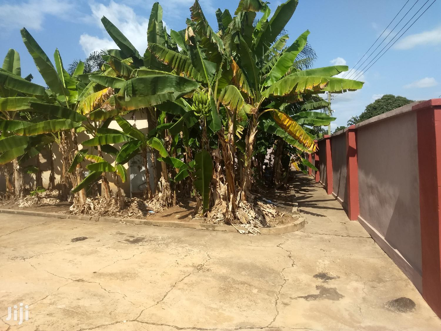 Half Plot at Gyinyase Near Kumasi High Sch ( Fence Gated) | Land & Plots For Sale for sale in Kumasi Metropolitan, Ashanti, Ghana