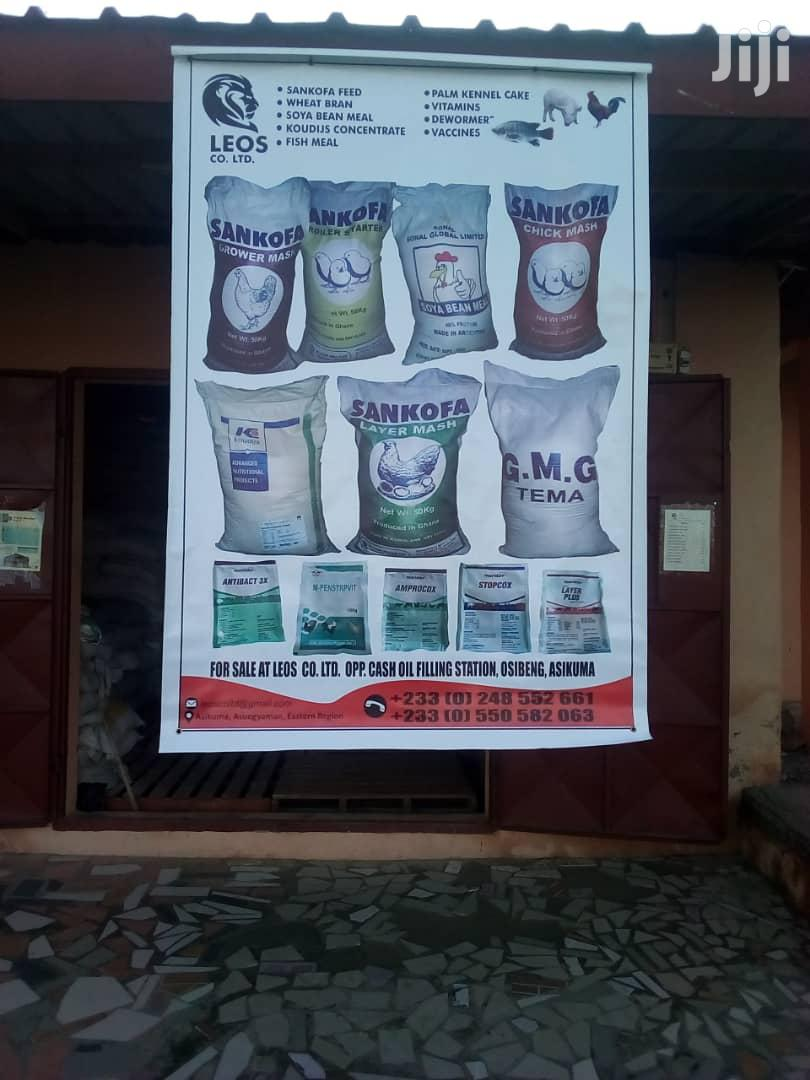 Poultry & Pig Feed