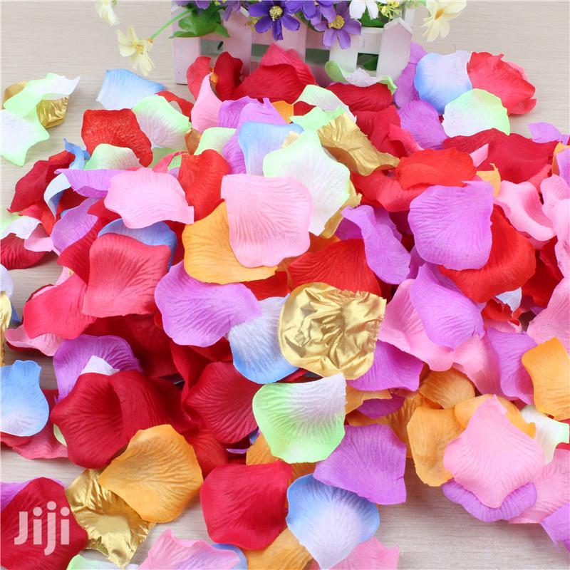 Petals In All Colours