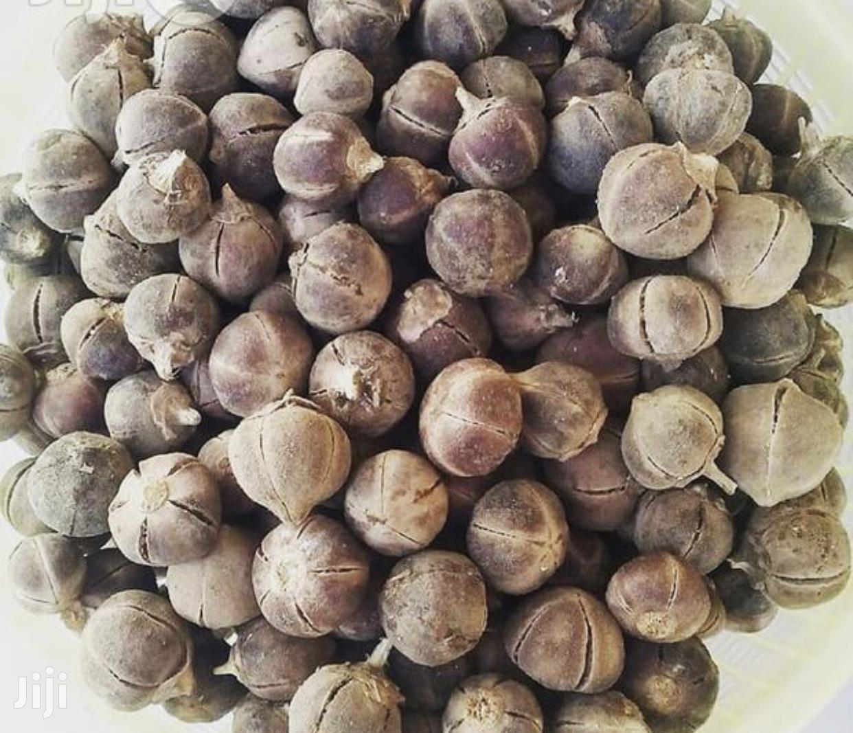 Goron Tula ( Silky Cola)