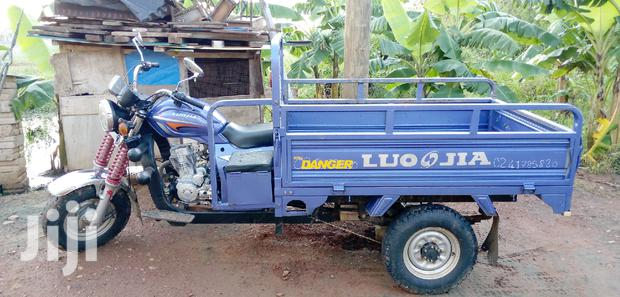 Archive: Luojia Cargo Tricycle 2019 Blue