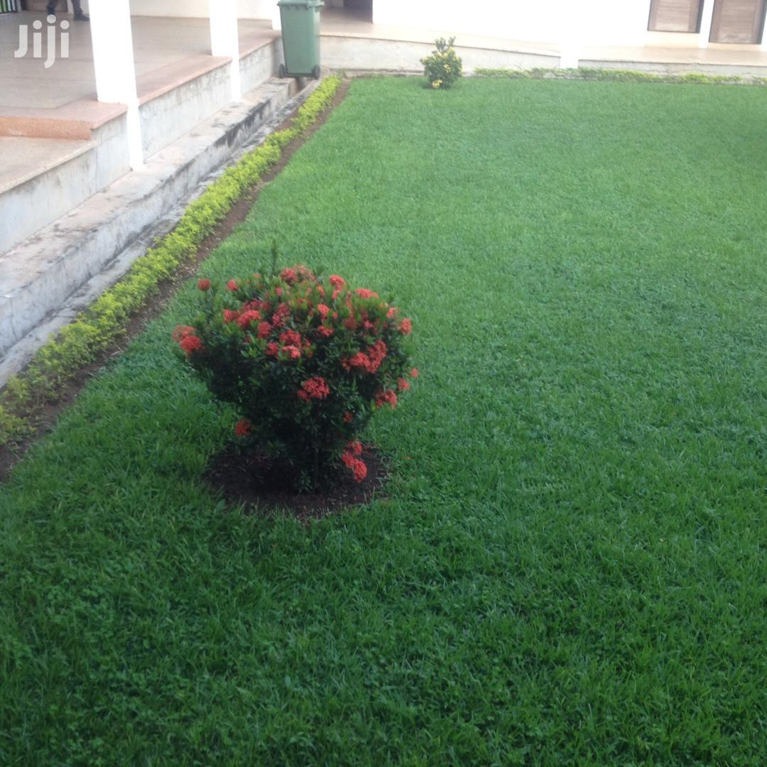Lawns And Garden Services | Landscaping & Gardening Services for sale in Accra Metropolitan, Greater Accra, Ghana