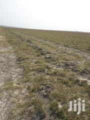 Buy Lands And Wait From Kings City Real Estate At Tsopoli | Land & Plots For Sale for sale in Greater Accra, Tema Metropolitan