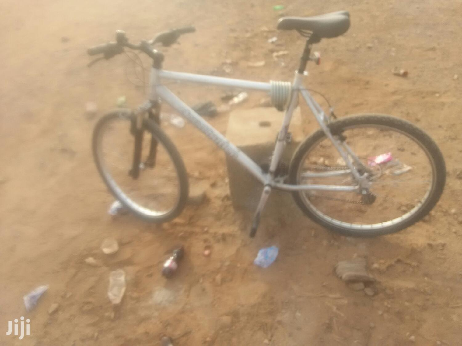 Archive: Bicycle For Sale