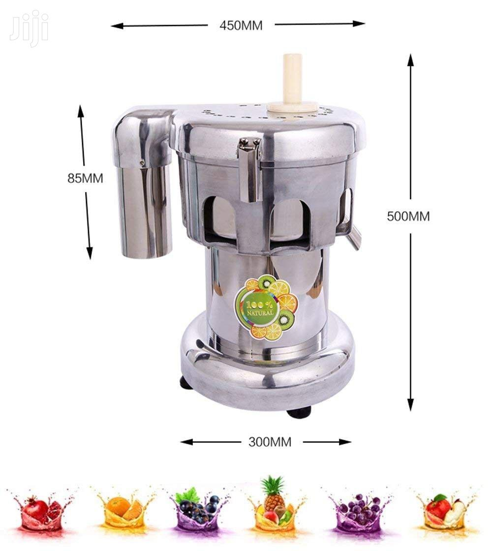 Commercial Juice Extractor Stainless Steel Juicer Juice