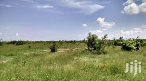 Fame Land for Lease   Land & Plots for Rent for sale in Eastern Region, Akuapim South