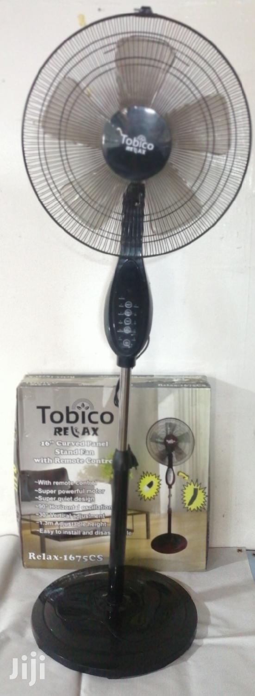 Remote Standing Fan