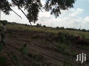 10 Acres of Farmland at Adeisu   Land & Plots For Sale for sale in Eastern Region, East Akim Municipal