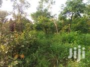 5,000 Acres Of Farmland For Sale | Land & Plots For Sale for sale in Brong Ahafo, Nkoranza North new