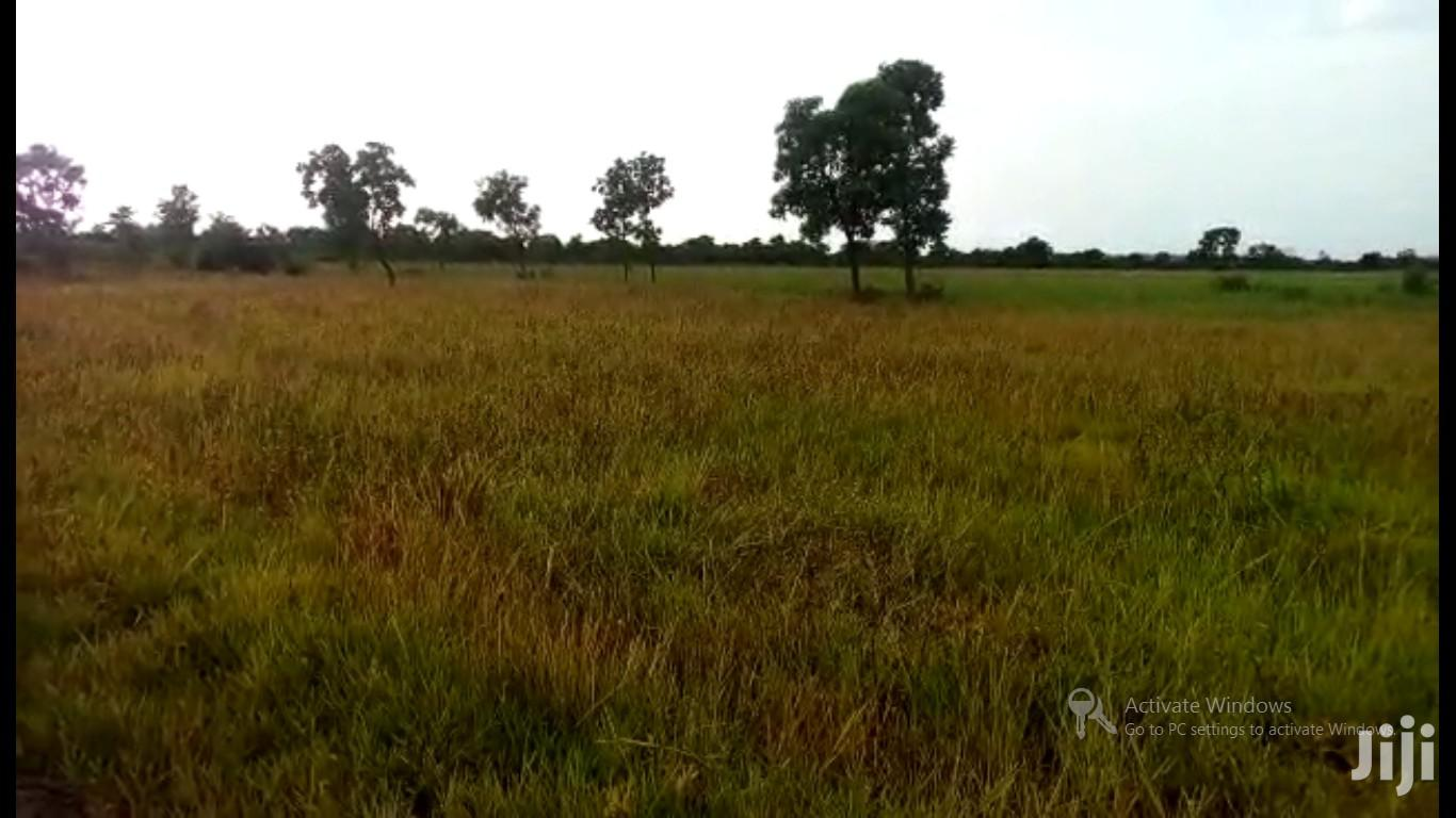 KINTAMPO DIST, BONO REGION - 400+ Acres of Rice Farmland | Land & Plots for Rent for sale in Kintampo North Municipal, Brong Ahafo, Ghana