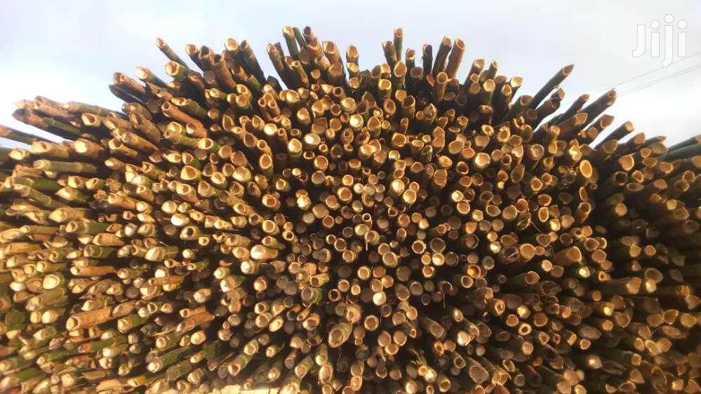 Bamboo For Sale | Building Materials for sale in Ga East Municipal, Greater Accra, Ghana