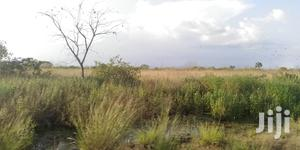 10.000 Acres of Land for Lease   Land & Plots for Rent for sale in Volta Region, Ho Municipal