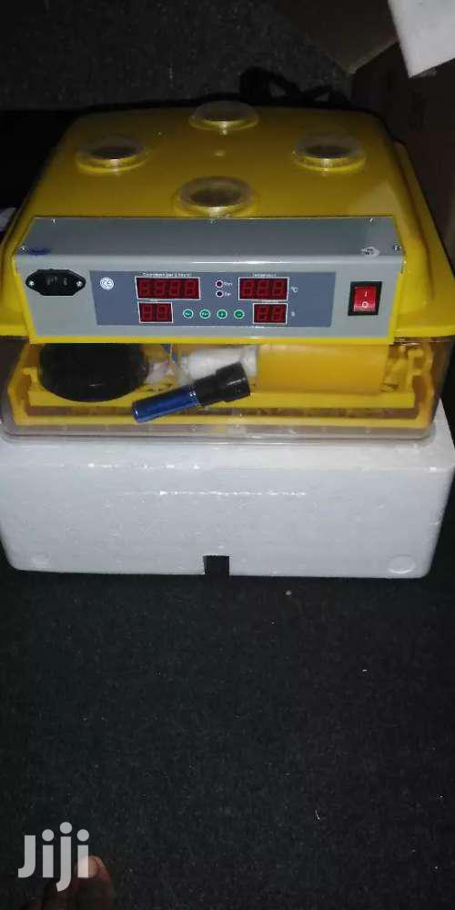 96 Capacity Incubator On Sale