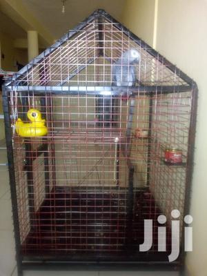 Big Cage For Lage Birds | Pet's Accessories for sale in Ashanti, Kumasi Metropolitan
