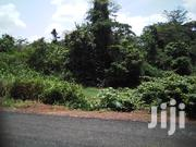 Farmland By The Roadside For Sale | Land & Plots For Sale for sale in Eastern Region, Fanteakwa