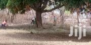 Plots Of Land Near Afienya Police Barrier, Shai Hills | Land & Plots For Sale for sale in Eastern Region, Upper Manya Krobo