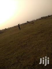 Land for Sale at Doryumu a Suburb of Shai Hills. | Land & Plots For Sale for sale in Greater Accra, Tema Metropolitan