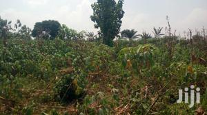 Farm Land For Sale At Nsaeam ,Asamankese Koforidua And Suhum   Land & Plots For Sale for sale in Greater Accra, Ga East Municipal