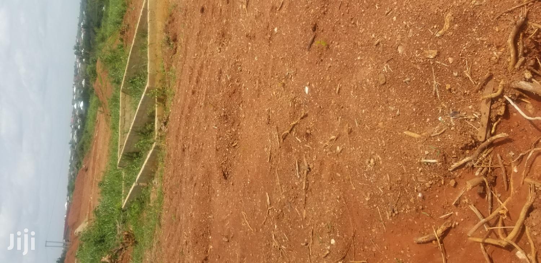 The Plot of Land at Kumasi Buryeduro